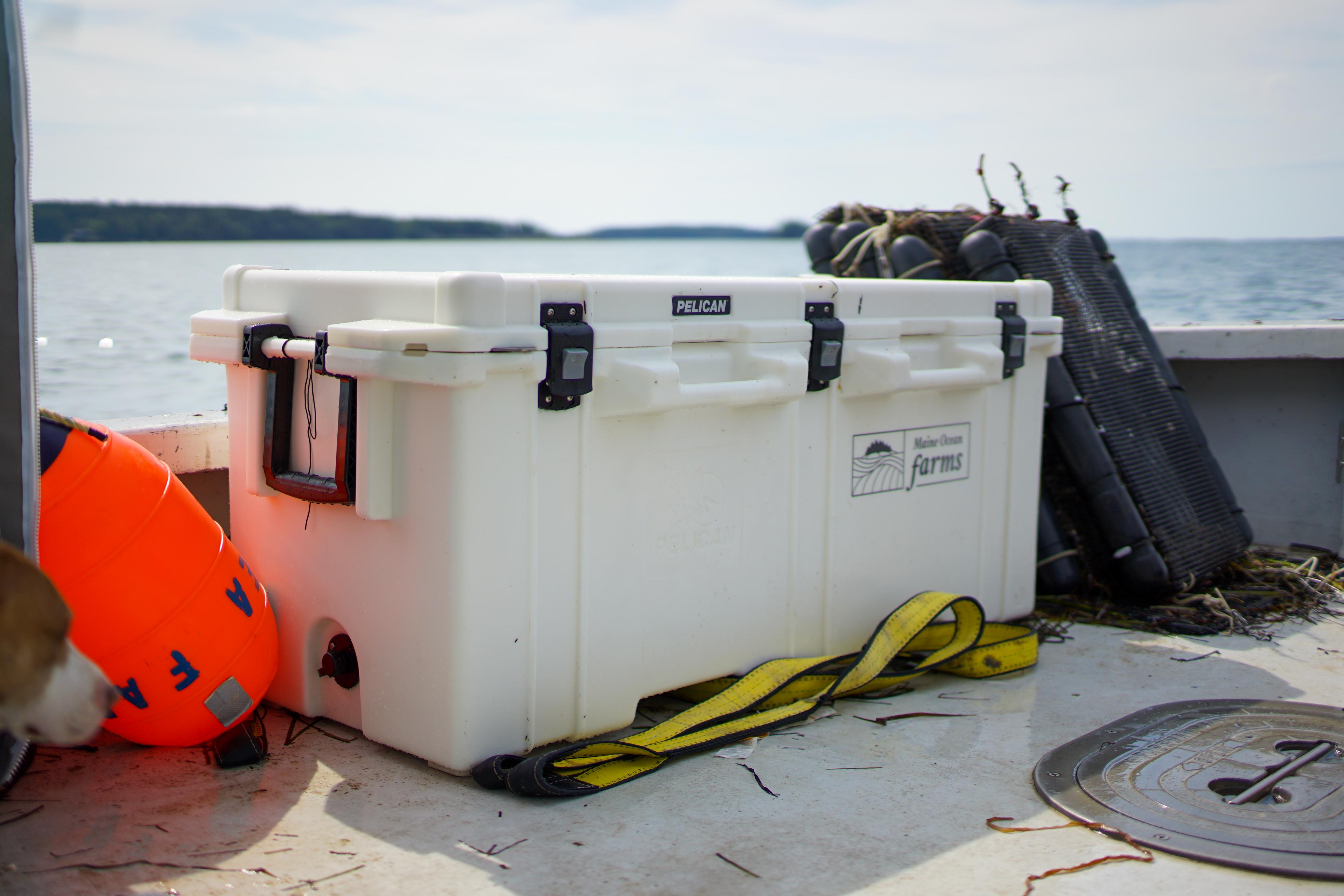250qt ocean cooler