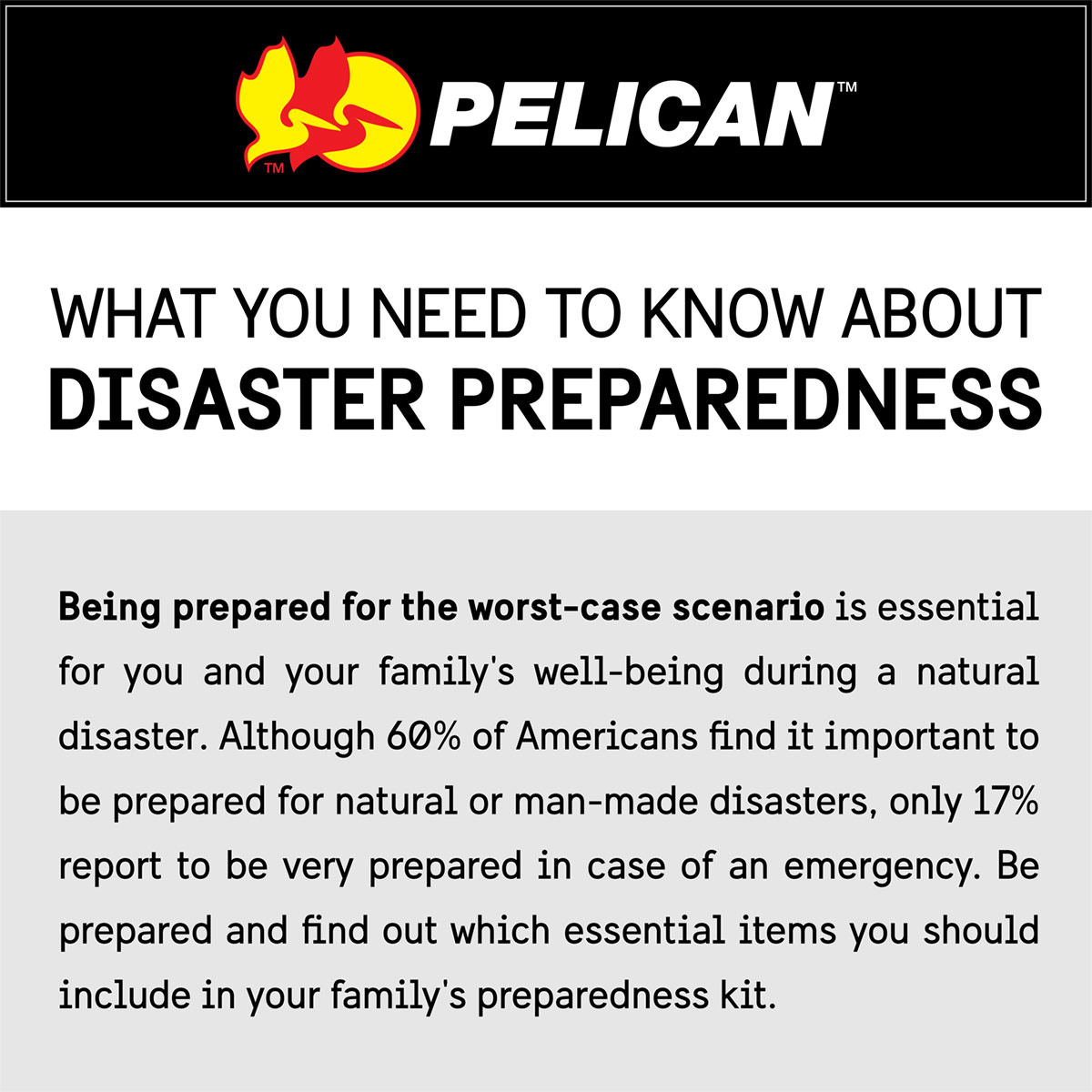 pelican professional blog what you need to know