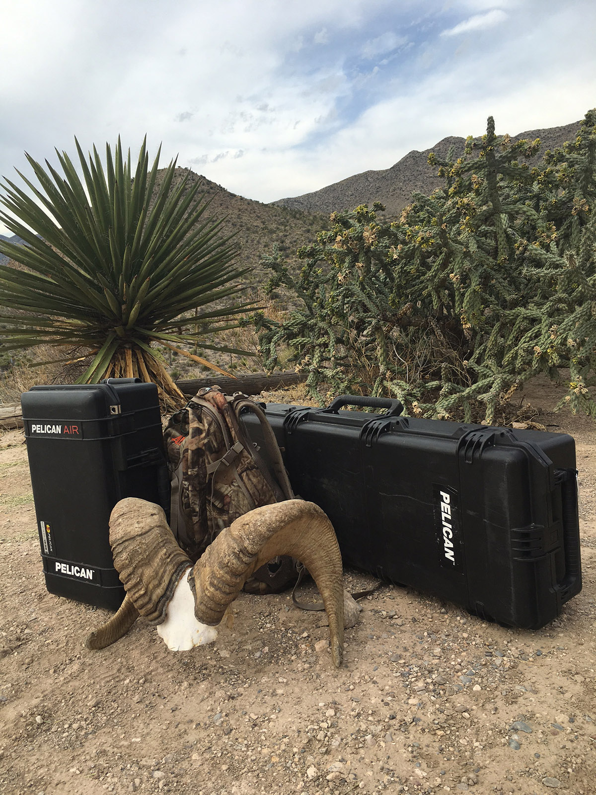 Pelican Products Joe Thomas hunting mexico cases