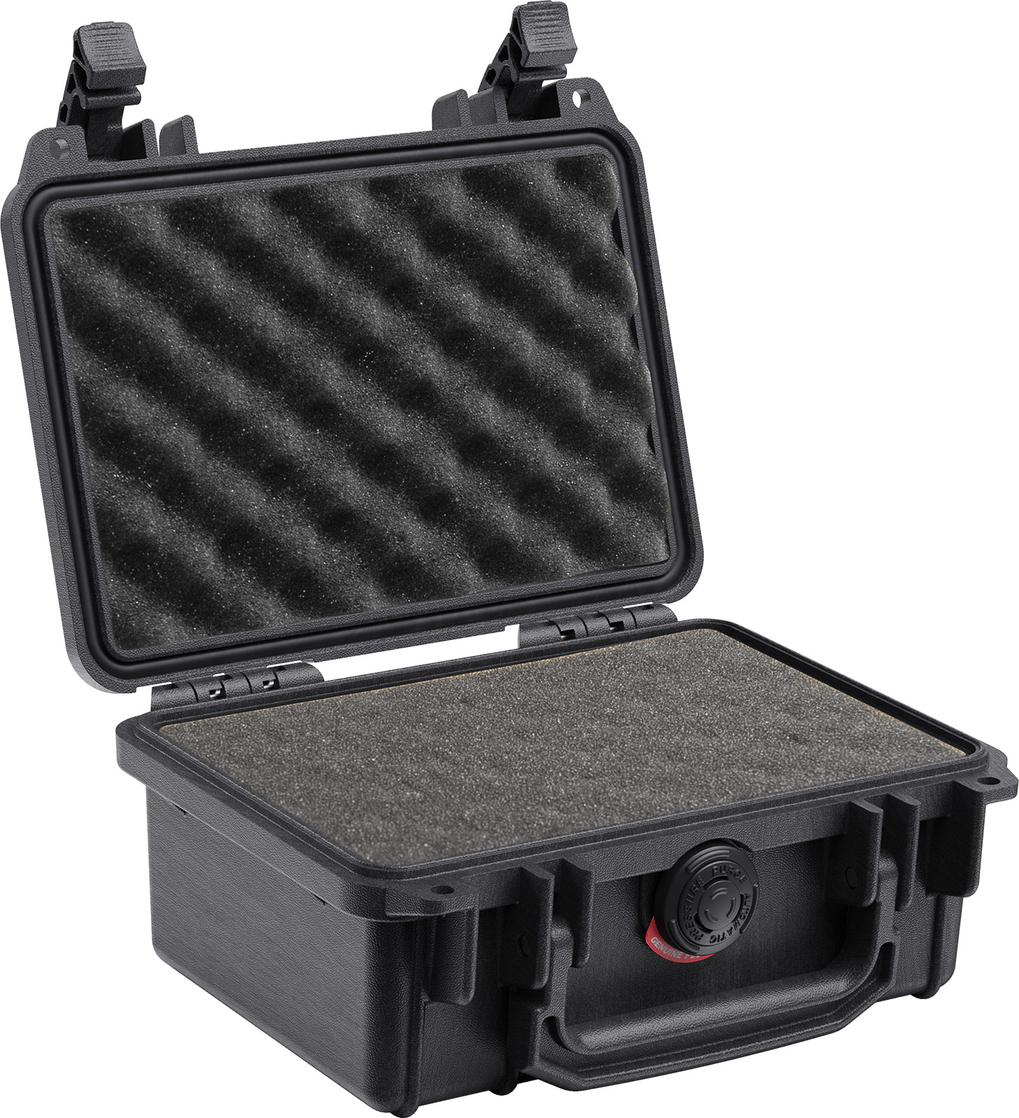 pelican 1150 watertight protective gopro case